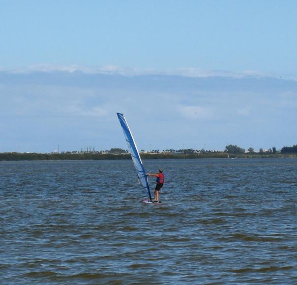 sail-boarder