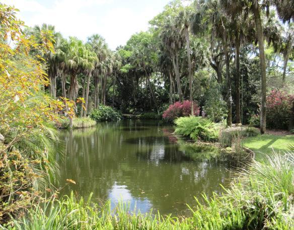 pond-scene